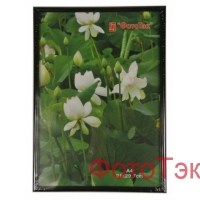 Фоторамка Pioneer DLK BD 18x24 Glass Black (12/48)